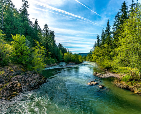 A,Bright,Blue,River,Flowing,Through,An,Oregon,Forest,As
